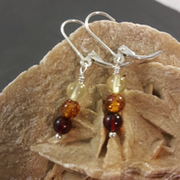 Tricolour Baltic Amber and Sterling Silver Short Earrings
