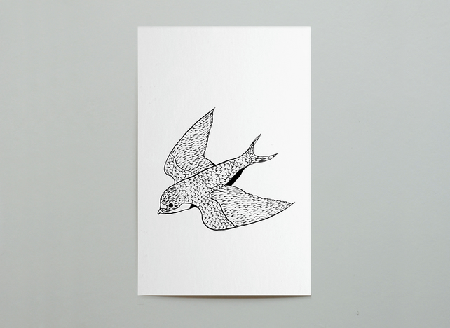 SALE. Swallow Postcard
