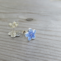 Forget-Me-Not Studs Large