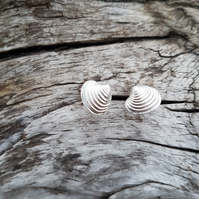 Duich Shell Earrings
