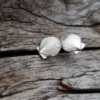 Scallop Stud Earrings