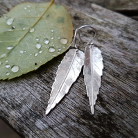 Ash Leaf Earrings large
