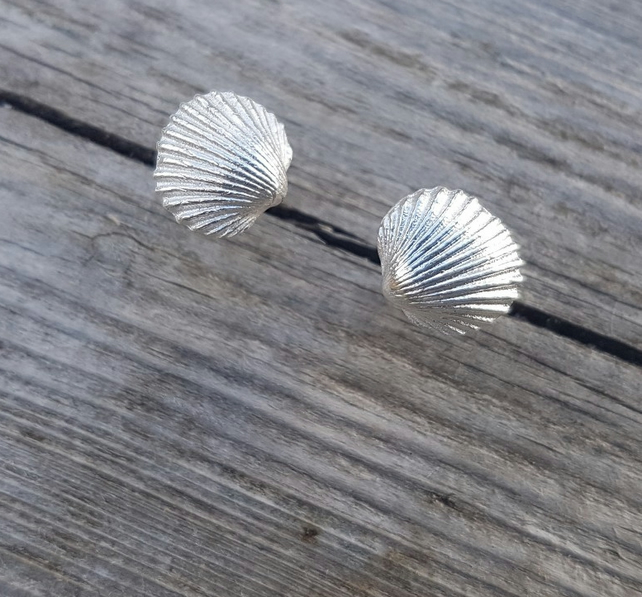 Cockle Shell Studs