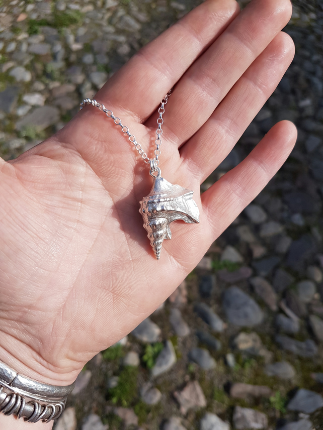 Pelican Foot Shell Necklace