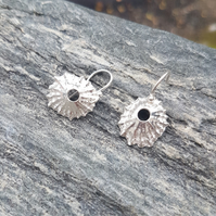 Limpet Loop Earrings