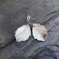 Alder Earrings