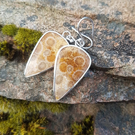 Fossilised Coral Earrings.