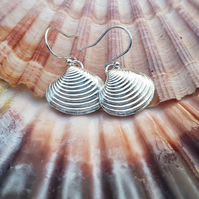 Venus Shell Earrings
