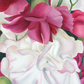 Pink and White Flowers - Original Oil Painting
