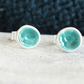 Turquoise coloured enamel silver earrings