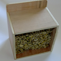 Ladybird, bug, insect shelter or house for garden with bamboo shoots.