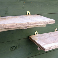 Natural rustic driftwood shelves for storage or display, wood from Cornwall
