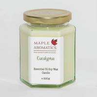Maple Aromatics Eucalyptus Essential Oil and Soy Wax Vegan 220g Candle