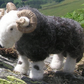 Herdwick sheep - handmade needle felted ram (tup)