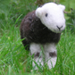 Herdwick hog - handmade needle felted young Herdwick sheep