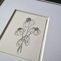 Flowers Ink Drawing