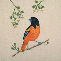 Embroidered Baltimore Oriole - Ready to Frame (Free UK P&P)