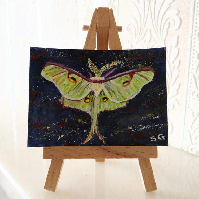 Luna Moth ACEO Miniature ORIGINAL Painting RESERVED FOR HAZEL BRANT