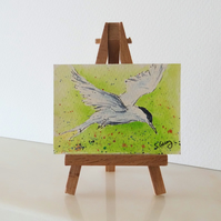 Bird miniature painting ORIGINAL ACEO