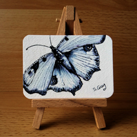 Butterfly Paintings
