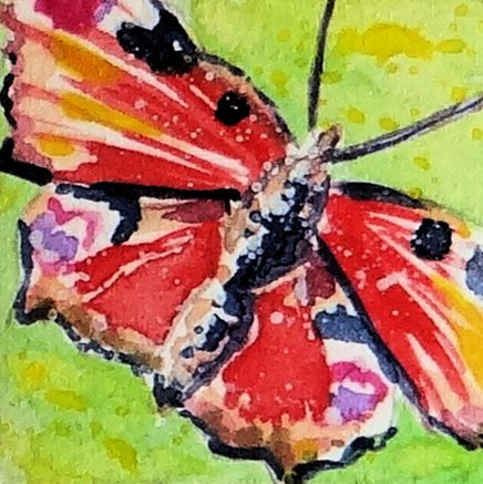 Butterfly Painting Inchie Original Miniature Art