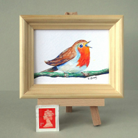Framed Robin Miniature Painting