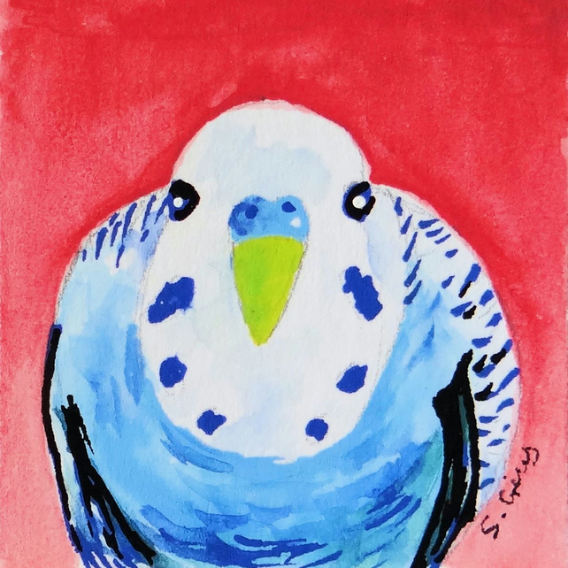 Budgie Budgerigar Twinchie Painting Miniature