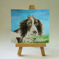 Miniature Pet Portrait