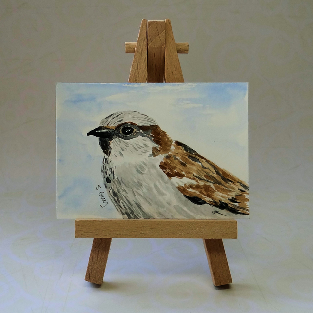 Sparrow Bird Painting