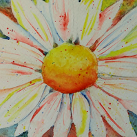 Colourful Daisy Watercolour Painting