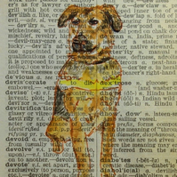 Guide Dog Dictionary Word Art RESERVED FOR ALISON HEASMAN