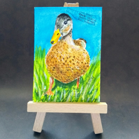 Duck aceo picture miniature painting