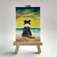 Collie dog at the beach aceo picture miniature painting FREE UK POST