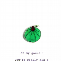 birthday card - oh my gourd ! you're really old !