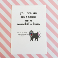 postcard - awesome mandrill - a6 postcard - motivational card