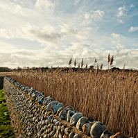 Cley - Landscape Photography 8 X 6 Wall Art Mounted Print