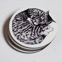 Sleeping Cat Pack of 4 Coasters