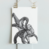 Illustrated Octopus A4 Print