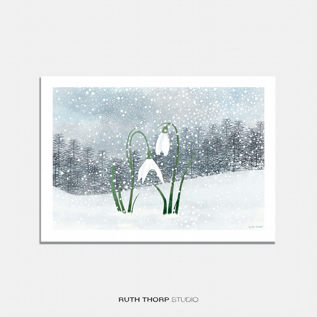 Snowdrops Illustrated Art Print