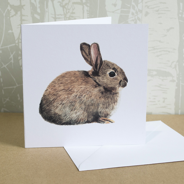 Wild Rabbit Greeting Card (Blank Inside) - British Wildlife - All Occasions