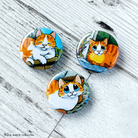 Relaxing Ginger Cats 25mm Three Badge Pack - 3 Designs