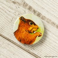 Red Squirrel Button Badge - 38mm