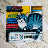 Tabby Cat in Laundry Room Blank Greeting Card
