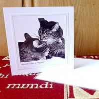 SALE! 4 cards or notelets –'Cats' (Crackers, Mendelssohn & Mozart)