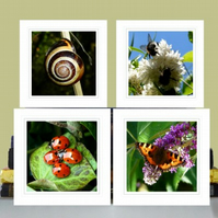 4 greeting cards –'Nature' (ladybirds, bees, tortoise shell butterfly, snail)