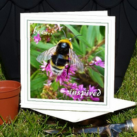 'Bee...inspired' (summer bumble bee) greeting card