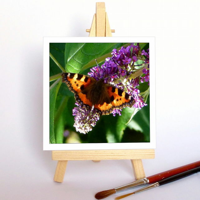 'Butterfly on buddleia' with a wooden display easel. Free UK P & P