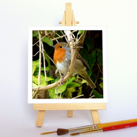 'Robin in ivy' with a wooden display easel. Free UK P & P
