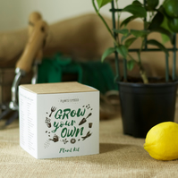Grow Your Own Lemon Tree Plant Kit
