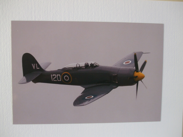 Photo of a Hawker Sea Fury, a late 1940s fighter aeroplane.